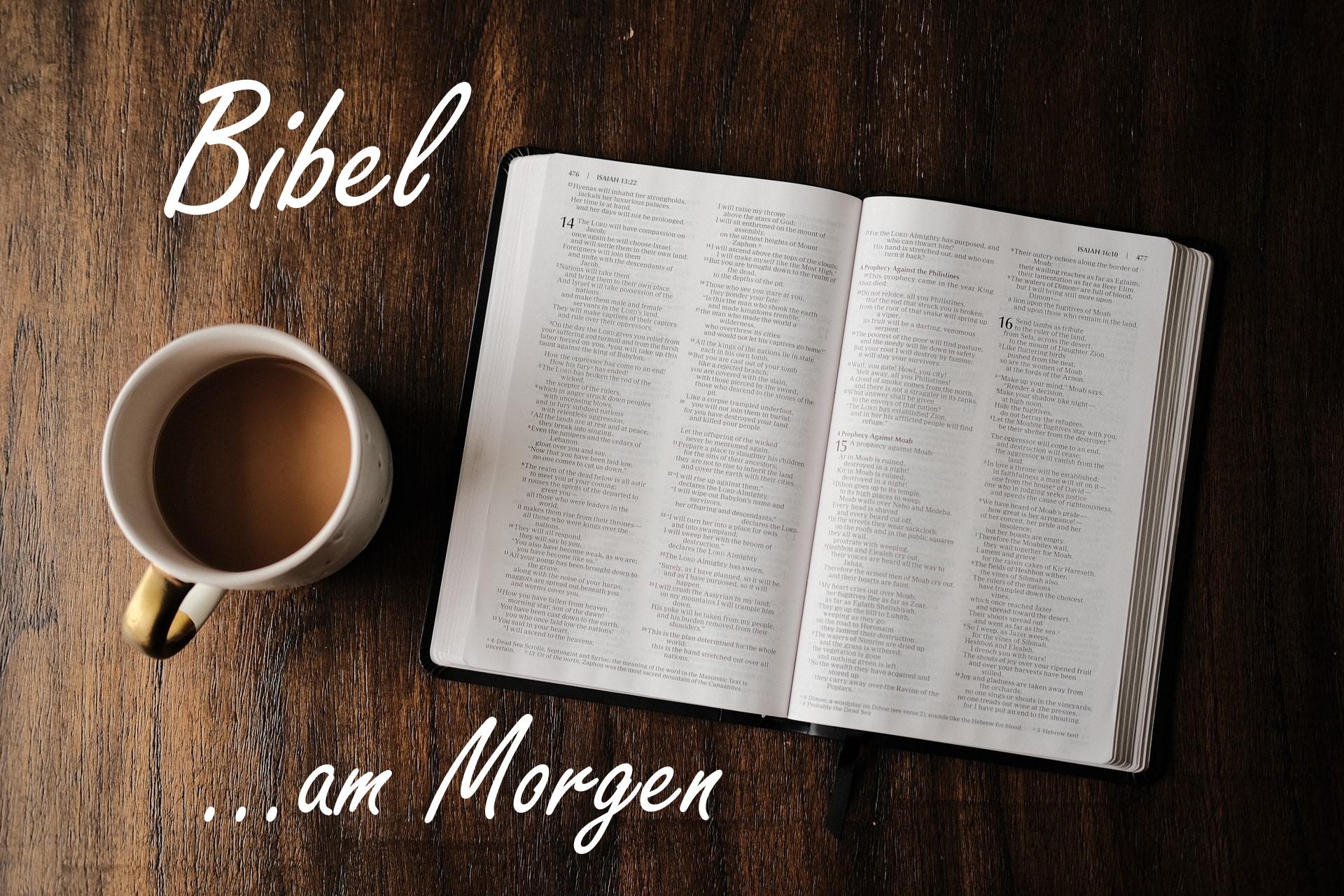 Bibel am Morgen
